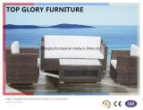 Сельских плетеной мебели в Саду диван (TG-032)