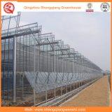 野菜または花のためのHot-DIP電流を通されたガラス温室