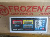 Peixes Frozen da sardinha (6-8PCS/kg)
