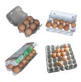Máquina de cartão de ovo (EC3500)