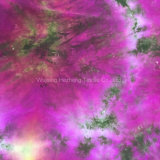Textilrayon-Gleichheit-Farben-Kleid-Gewebe