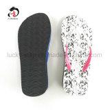 Nuevo zapato de las mujeres de EVA del diseño