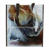 Мультфильм дизайн PP из ламинированной магазинов женская сумка для поощрения