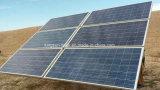 320W 고능률 공장은 단청 태양 전지판을 만들었다