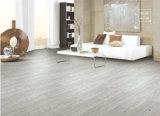 Tipi differenti mattonelle di pavimento di ceramica del cavallo bianco
