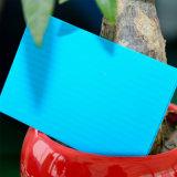 лист полости поликарбоната крыши парника стены 6mm твиновский