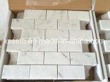 Mosaico de mármol blanco de Bianco Carrara para la decoración de la pared