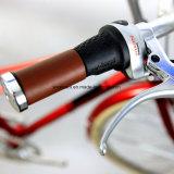 city Bike (CTB19) 2017 고품질 Chromoly 숙녀