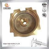 Fazer-- Na carcaça de bronze do OEM das peças de automóvel de China