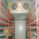 Chambre froide, pièces de réfrigération de surgélateur pour la nourriture