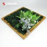 Оптовая торговля естественный вид поддельные растений на стене рамы для интерьера