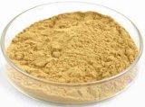 0,6% d'extrait de macaïne Maca pour supplément à base de plantes