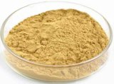 Extracto de Maca de Macase de 0,6% para Suplemento Herbal