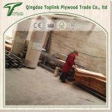 Madeira compensada de Bintangor usada para a embalagem ao ar livre de Linyi Shandong China