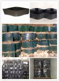 HDPE Geocell met Direct Ce- Certificaat van Fabrikant