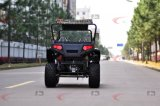 150cc와 200cc 2 Seaters 4X2 UTV Ut2001