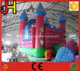 Aufblasbares Schloss-Schlag-Haus-aufblasbarer Schloss-Prahler für Verkauf