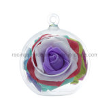陸生動物飼育器の容器のガラス球の形の花のプラントハングのつぼ