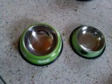 Winloaz Brand Stainless Steel Pet Bowl com anel de borracha anti-deslizamento