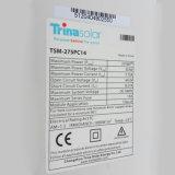 Prezzo del comitato solare di Trina/Yingli/Jinko/Suntech 250W