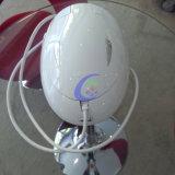 Máquina portable de Hifu de los productos de belleza del precio bajo del Ce FDA mini