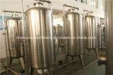 Acqua sotterranea che elabora filtro (serie del RO)