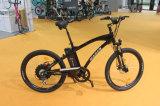 Garanzia elettrica a basso rumore eccellente di Ebicycle della città della bici certificata En15194 del Ce dell'onda di seno M660 2 anni