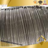 Filo di acciaio a spirale della Cina 5mm
