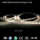 12V/24V IP20 IP62 IP65 IP67 IP68 5050 LED Streifen