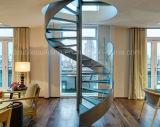 Escada em espiral de vidro com aço inoxidável Raillling
