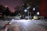 15W diodo emissor de luz Solar Streetlight Suited para Residential, Industrial, Commercial, Parking Lot (produto quente)