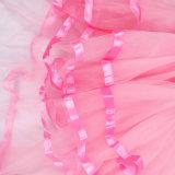 Девушки станцевали в цвете платья балетной пачки рождественской вечеринки ярком