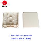 2 портов для использования внутри помещений Low-Profile прекращение (PTB084)