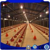 La avicultura de la estructura de acero vertió para la casa de pollo