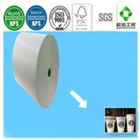Qualität PET überzogenes Papier für Diaposable Cup