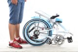 Novo modelo de bicicleta branca com boa qualidade (SH-FD047)