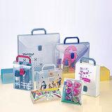 PVC Kunststoffgehäuse-Kasten