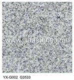 De grijze Tegel van het Graniet (yx-G002)