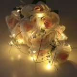 多機能の防水銅夜ライトXmasの結婚披露宴IP65の豆電球のための余分薄い星明かりのストリングライト