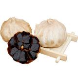 첨가물 없는 FDA에 의하여 거치되는 단 하나 까만 마늘 (500g/bag)