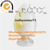 Pharmazeutische Rohstoffe Liothyronine/T3 CAS 6893-02-3, zum von Hypothyreose zu behandeln
