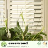 Obturador/grelha quentes da plantação do Basswood do Sell do obturador novo do Basswood