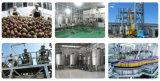 Populäre Passionsfrucht-Masse, die Maschinen im Medium zu große Schuppen-vollem automatischem herstellt