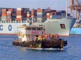 De Dienst van de Logistiek van de Consolidatie FCL van Guangzhou aan Nederland