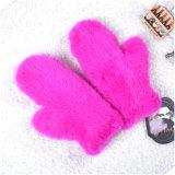 De Handschoenen van de Manier van het Leer van de Handschoenen/van de Dames van Fingerless van jonge geitjes