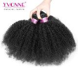 Yvonne Virgin 인간적인 브라질 아프로 비꼬인 곱슬머리