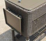 dispositivo di raffreddamento del patio 80qt con il contenitore di canna