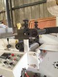 Flexo Drucken-Maschine mit 1 gestempelschnittener Drehstation (ZB -320)