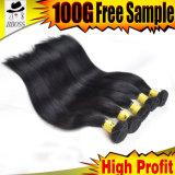 Extensions en bloc brésiliennes de cheveu de prolonge de cheveux humains