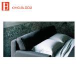 Strati sezionali moderni del sofà del tessuto della traversina con lo sconto dai negozi di mobili